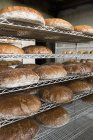 Assorted loaves of bread — Stock Photo