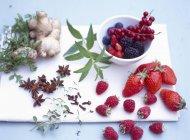 Крупный план различных ягод со специями и травами — стоковое фото