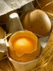 Cartone di uova fresche — Foto stock