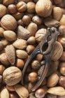 Varie noci e schiaccianoci dell'annata — Foto stock