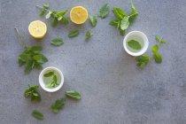 Limón y menta té en tazas - foto de stock