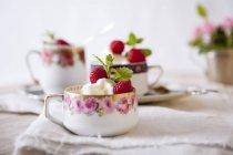 Elder-fiore gelato con lamponi — Foto stock