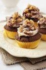 Diversi cupcakes di arachidi — Foto stock