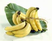 Свіжі пучки стиглі банани — стокове фото
