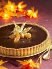 Шоколадом и фиcалисом торт — стоковое фото