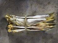 Sardines tied with twine — Stock Photo