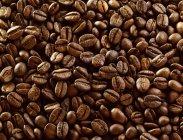 Chicchi di caffè freschi — Foto stock