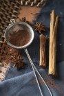 Cacao in polvere in un colino da tè — Foto stock