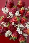 Fresas frescas con flores - foto de stock