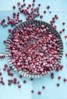 Mirtilli rossi congelati in piatto di metallo — Foto stock
