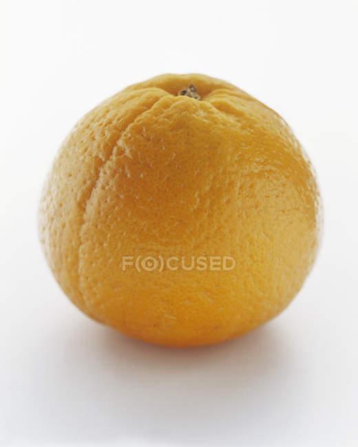Nahaufnahme testy orange — Stockfoto