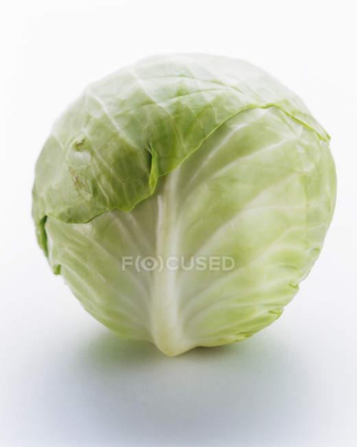 Глава белокочанной капусты — стоковое фото