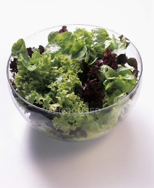 Чаша Асорті салату — стокове фото