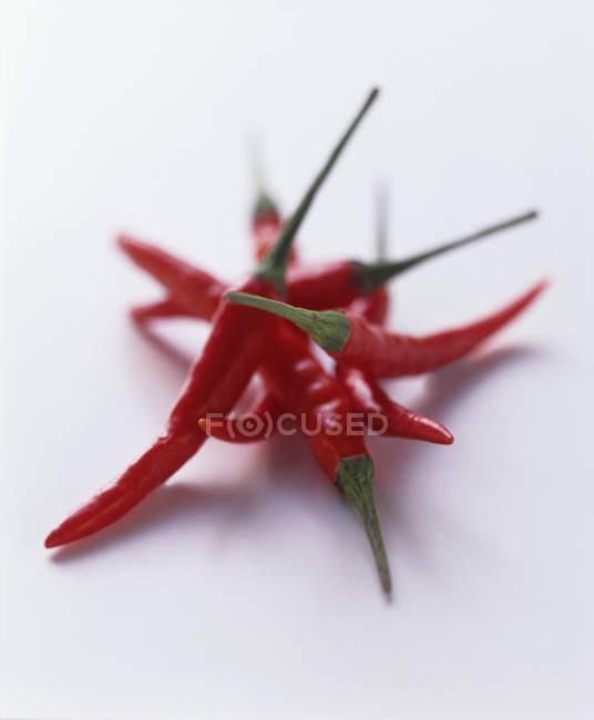 Pimentos quentes tailandeses vermelhos — Fotografia de Stock