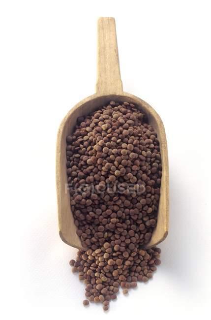 Brown Lentils in a Wooden Scoop — Stock Photo