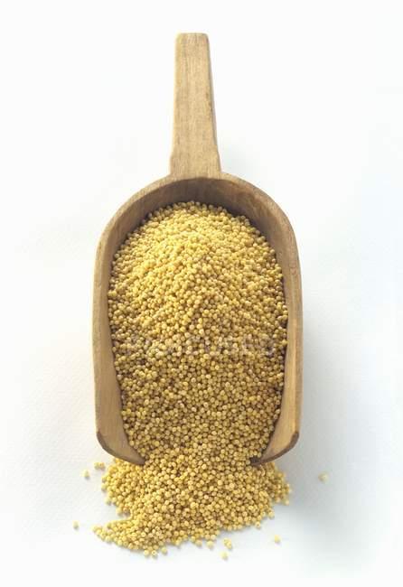 Millet in a Wooden Scoop — Stock Photo