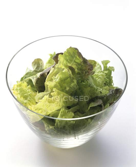 Змішані салату у салатниці скла — стокове фото