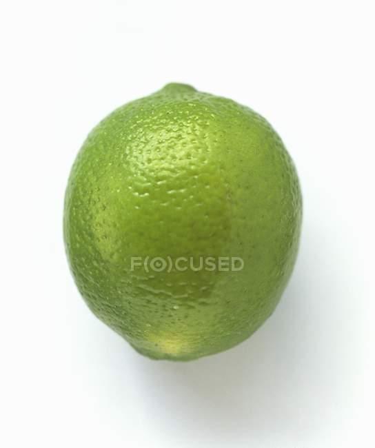 Closeup green Lime — Stock Photo