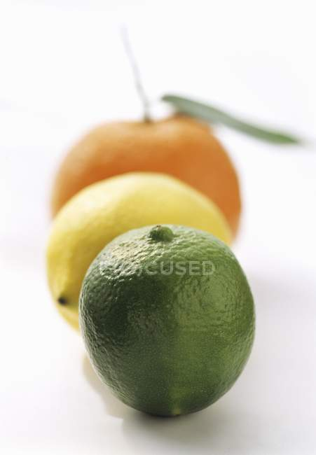 Lime with Lemon and Orange — Stock Photo