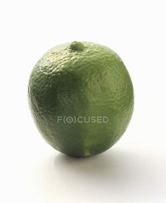 Зелений лайма — стокове фото