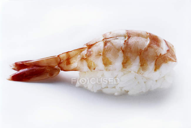 Ebi Nigiri Sushi — Stock Photo