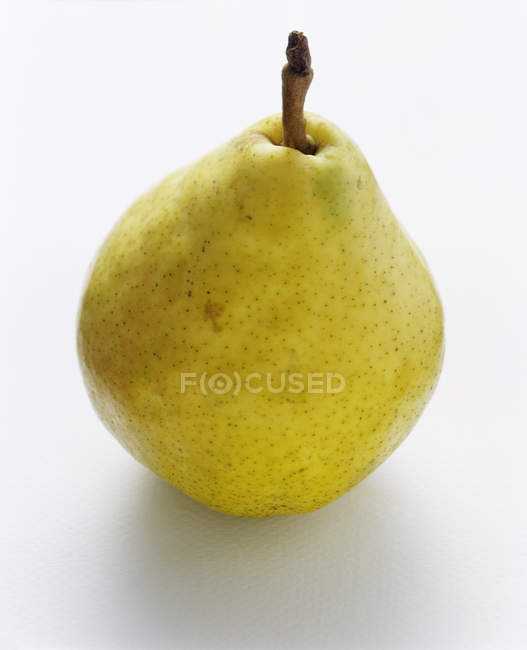 Testy whole Pear — Stock Photo
