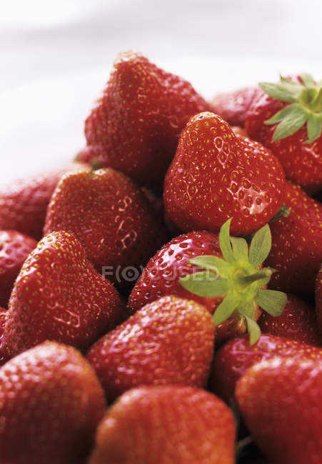 Strawberries with leaves — Stock Photo
