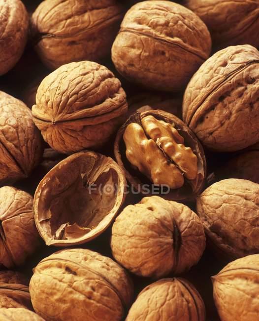 Pile of Walnuts, macro — Stock Photo