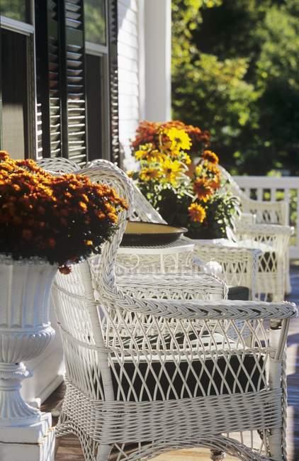 Денного зору ганок з кімнатні квіти і плетені крісла — стокове фото