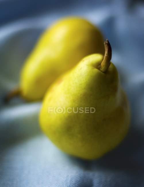Duas peras maduras frescas — Fotografia de Stock