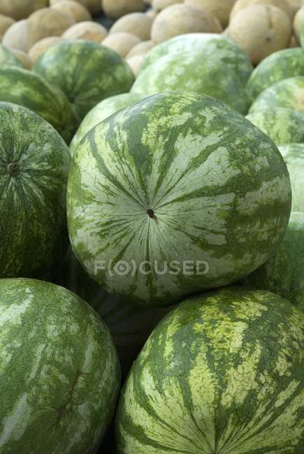 Fresh Whole Watermelons — Stock Photo