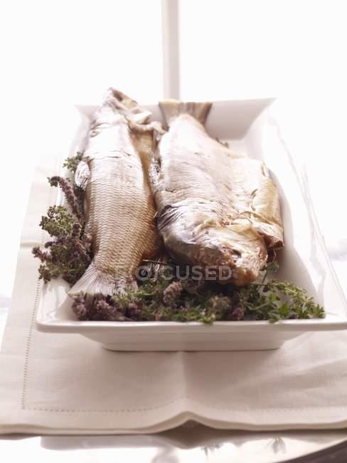 Gesamten zubereiteten Fisch auf Teller — Stockfoto