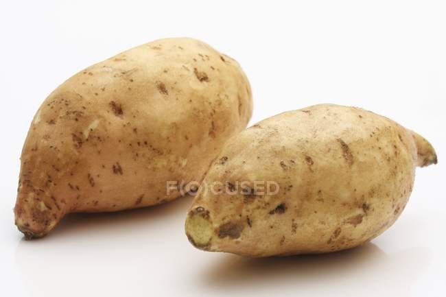 Rohen Süßkartoffeln — Stockfoto