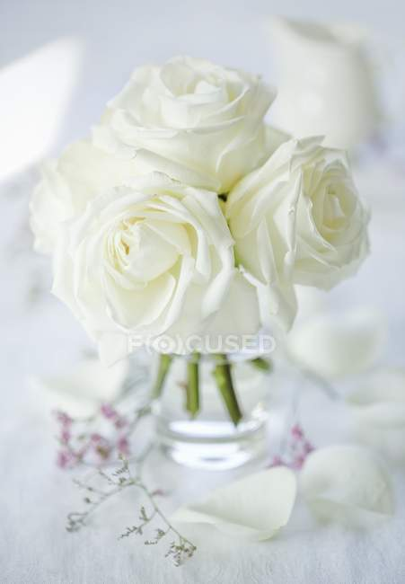 Closeup view of a bunch of white roses in a glass vase — Stock Photo