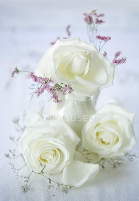 Closeup view of white roses in a vase and to the side — Stock Photo