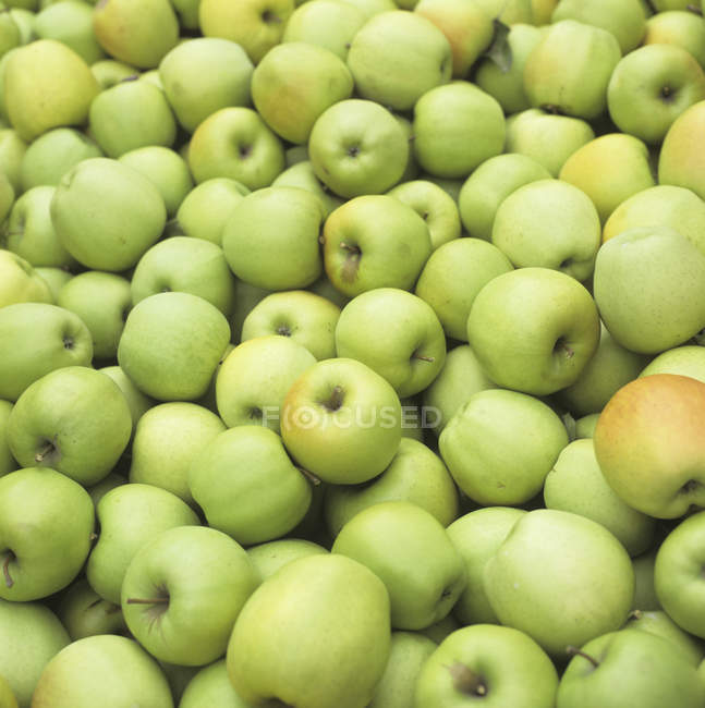 Ripe Green Apples — Stock Photo
