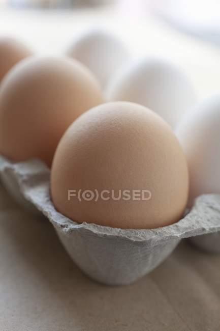Œufs de poulet dans une boîte en carton — Photo de stock