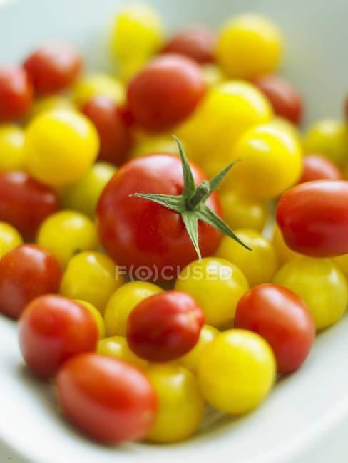 Красные и желтые помидоры черри — стоковое фото