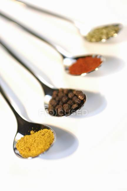 Esslöffel Curry, Piment, Paprika und getrocknete Petersilie — Stockfoto