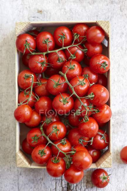 Fresh vine tomatoes in crate — Stock Photo