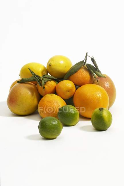 Various citrus fruits — Stock Photo