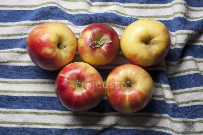 Mitsu apples on striped towel — Stock Photo