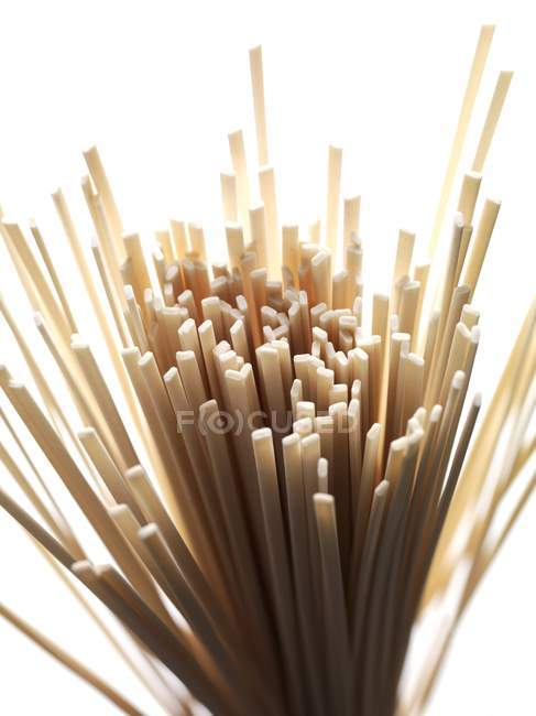 Bundle of dried udon pasta — Stock Photo