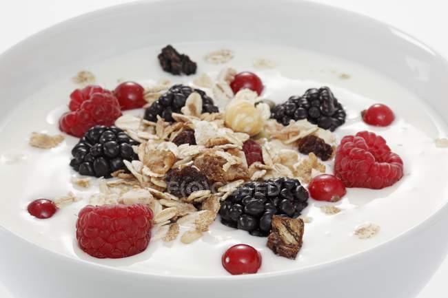 Мюсли с ягодами и йогуртом — стоковое фото