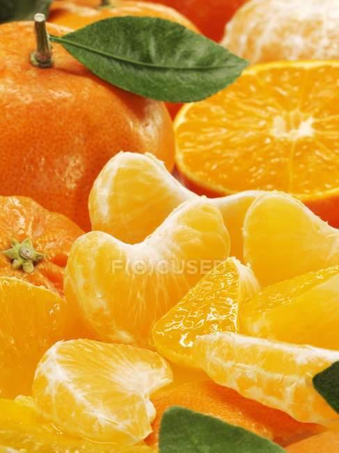 Sliced fresh Mandarins — Stock Photo