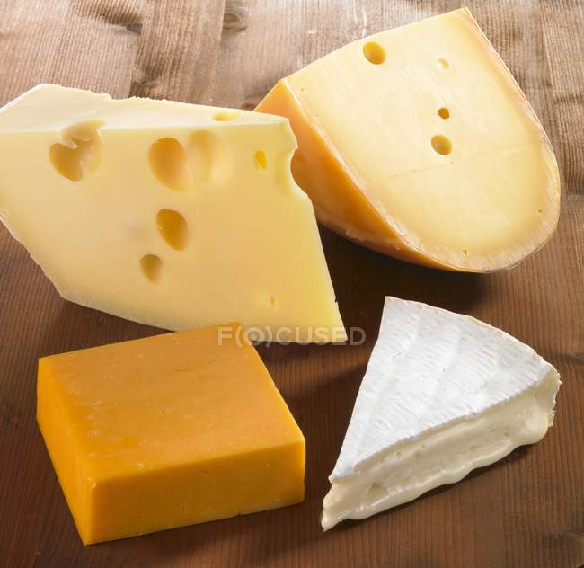 Four pieces of cheese — Stock Photo