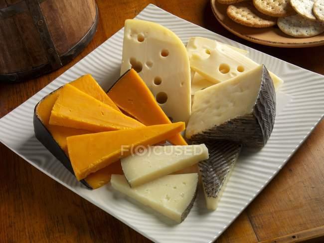 Швейцарский сыр детский — стоковое фото
