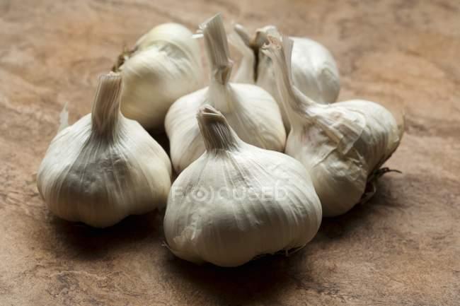 Весь чеснок луковицы — стоковое фото