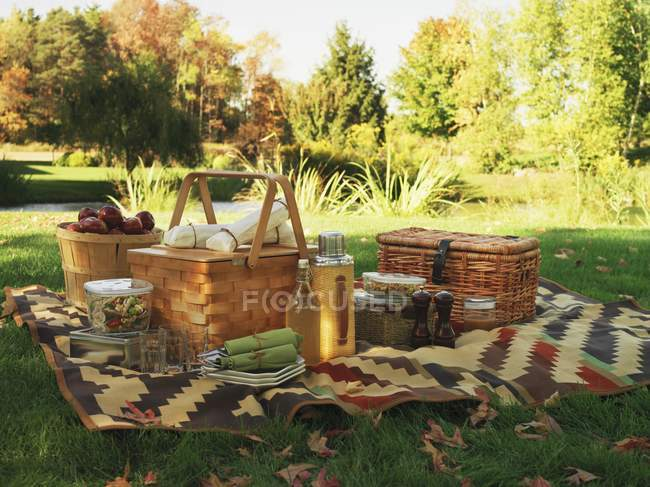 Tagsüber Blick auf eine Picknick-Decke und Picknick-Körbe auf einem Feld — Stockfoto