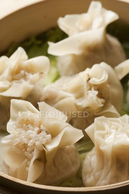 Raviolis chinois shumai — Photo de stock
